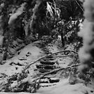 Snowy Stairs by Russell Jenkins