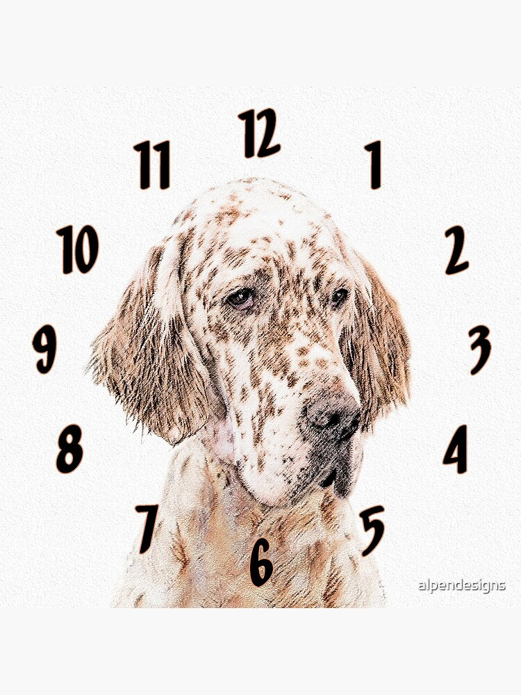 English Setter (Orange Belton) by alpendesigns