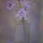 Bluebells Forever by Dianne English