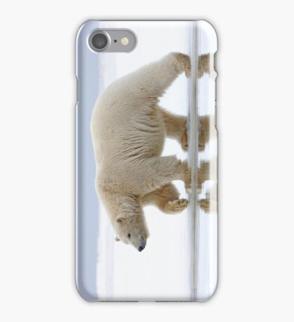 Northen Reflection iPhone Case iPhone Case/Skin