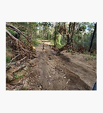 4WD ROUTE Photographic Print