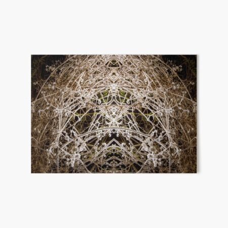 Pagan Spirit Art Board Print