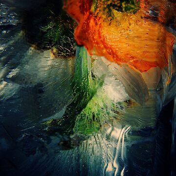 Wildflower by RobinNeilly