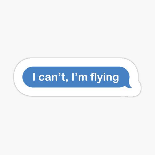 I can't, I'm flying facebook aviation plane design Sticker