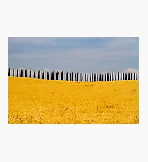 Toscana landscape - Italy Photographic Print