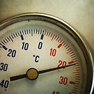 Old thermometer by Patrick Reinquin