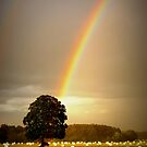 """""""GOLD BENEATH THE OAK"""" by snapitnc"""