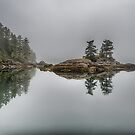 Jamieson Island by toby snelgrove  IPA