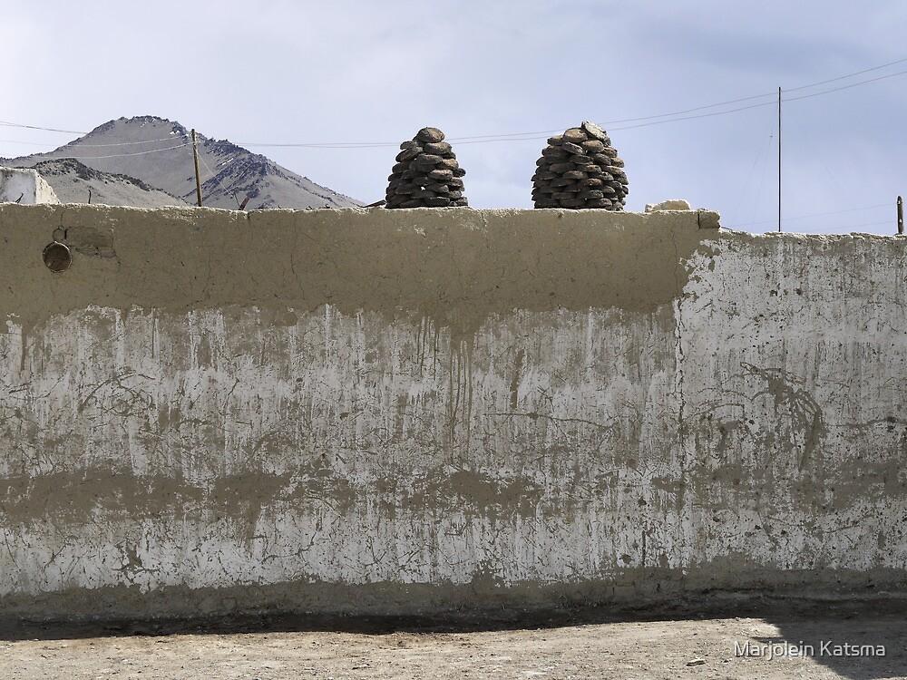 Storing fuel in Karakul (2) by Marjolein Katsma