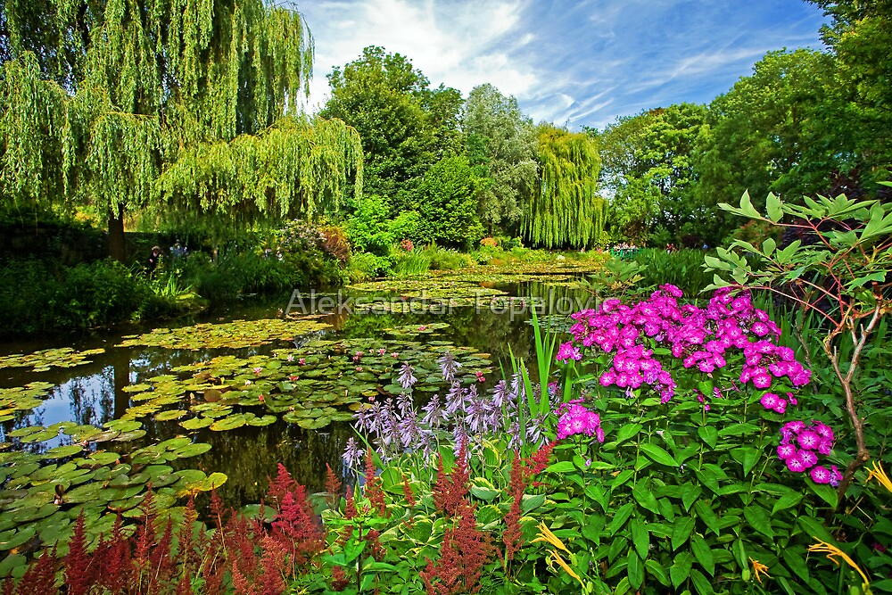 Claude monet 39 s garden at giverny france by aleksandar topalovic redbubble for Monet s garden france