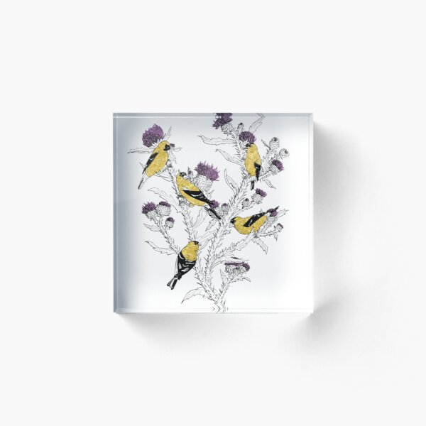 Goldfinches Acrylic Block