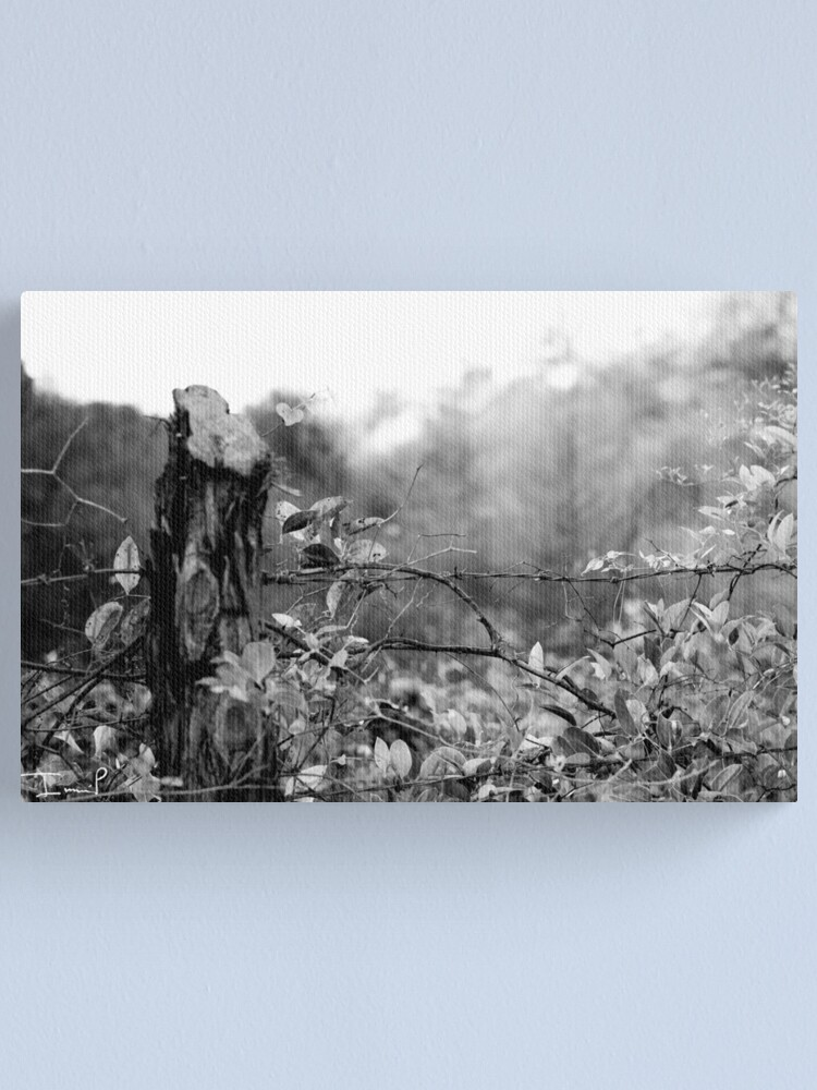 Alternate view of Country Road Canvas Print