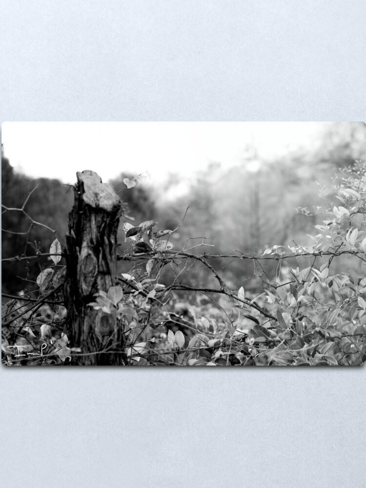 Alternate view of Country Road Metal Print