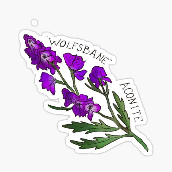"""""""Wolfsbane"""" aconite Sticker"""