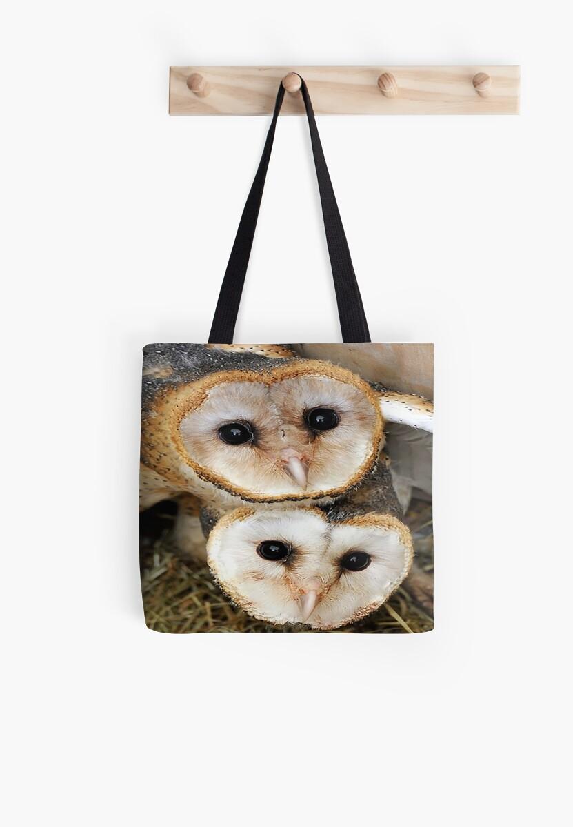 Cute baby barn owls  by MNA-Art