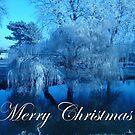 Merry Christmas by Laura Mancini