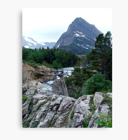 THE RUN FROM SWIFTCURRENT LAKE Canvas Print