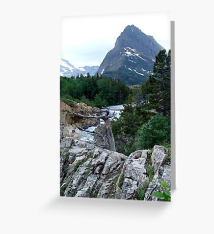 THE RUN FROM SWIFTCURRENT LAKE Greeting Card