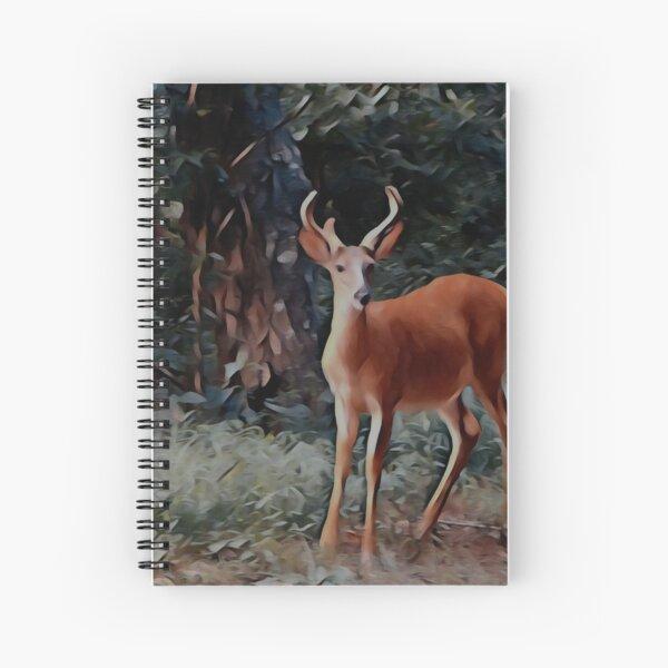 The yearling Buck Deer Spiral Notebook