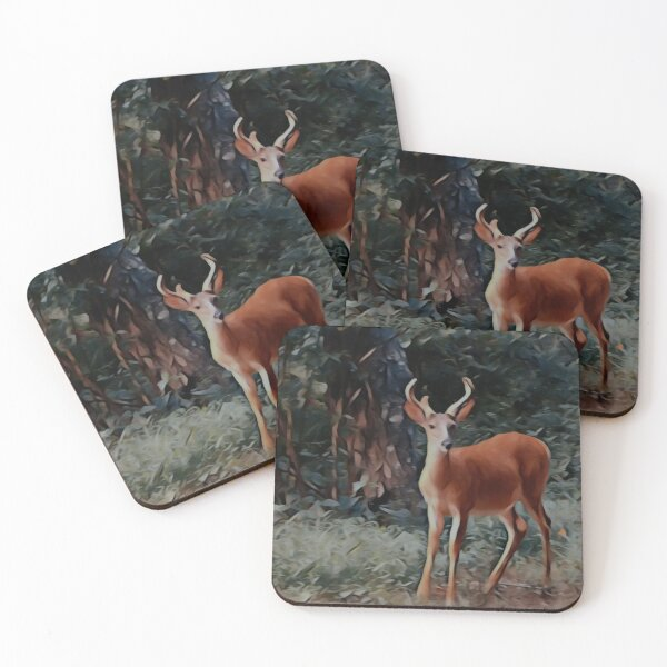 The yearling Buck Deer Coasters (Set of 4)