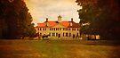 Mount Vernon by Peyton Duncan