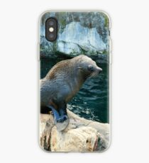 Fur seal iPhone-Hülle & Cover