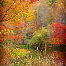 Fabulous October #4 by Nicole  McKinney