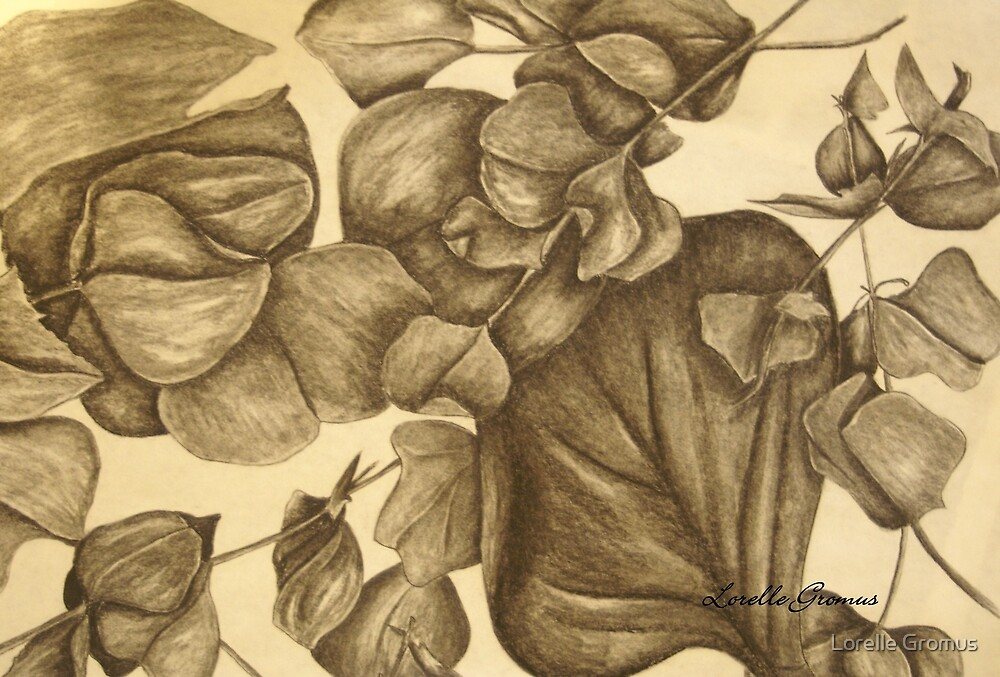 Plant Study III by Lorelle Gromus