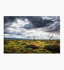 Stormy Photographic Print
