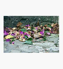 Capri Fall Photographic Print