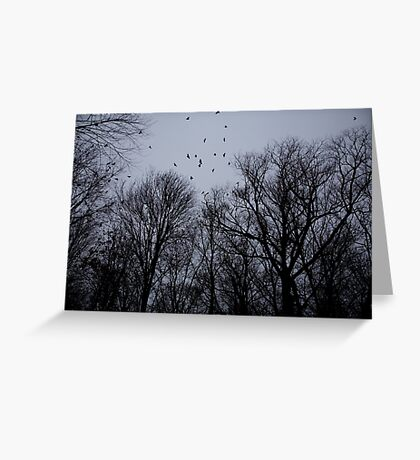 Raven Skies Greeting Card