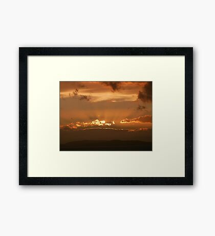 Primrose Sunset Framed Print
