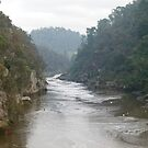 Cataract Gorge by DEB CAMERON