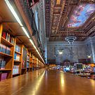 Quiet time in the New York Public Library. by phototherapy318
