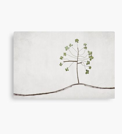 Tree of Luck Canvas Print
