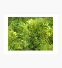 Underwater Vegetation 515 Art Print