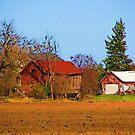 Farm Scene by VJSheldon