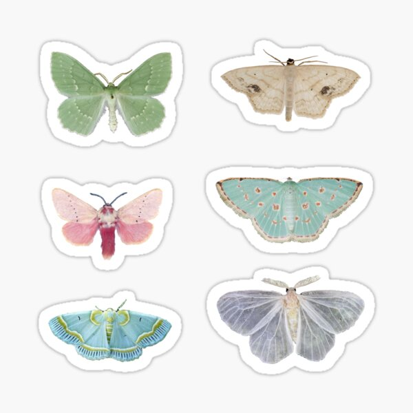 Pastel Moths Sticker