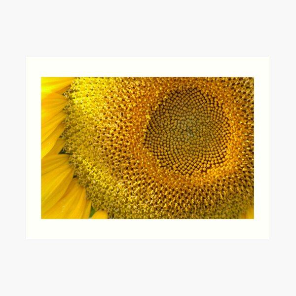 van Gogh Texture Art Print