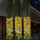 Vase trio by AmandaWitt