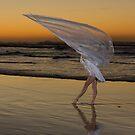Among my swan by Brian Edworthy