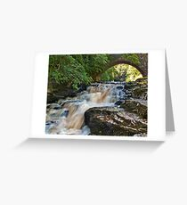 West Burton Falls Greeting Card