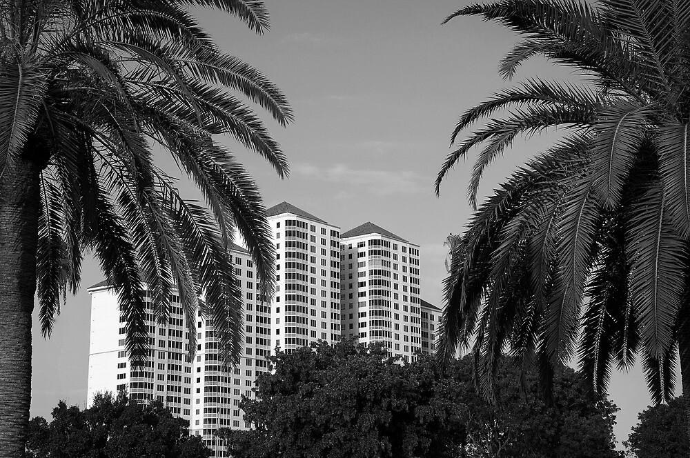 The Towers  by John  Kapusta