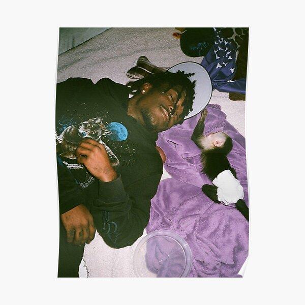 Lil Uzi Sleep Poster