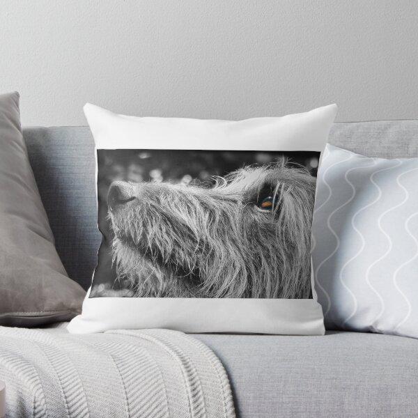 Shaggy Lurcher Throw Pillow