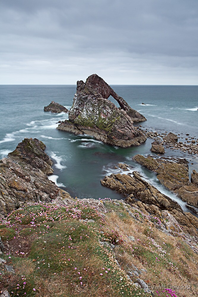Bow Fiddle Rock by EvaMcDermott