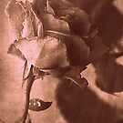 Intuitively Romantic in Sepia by Lozzar Flowers & Art