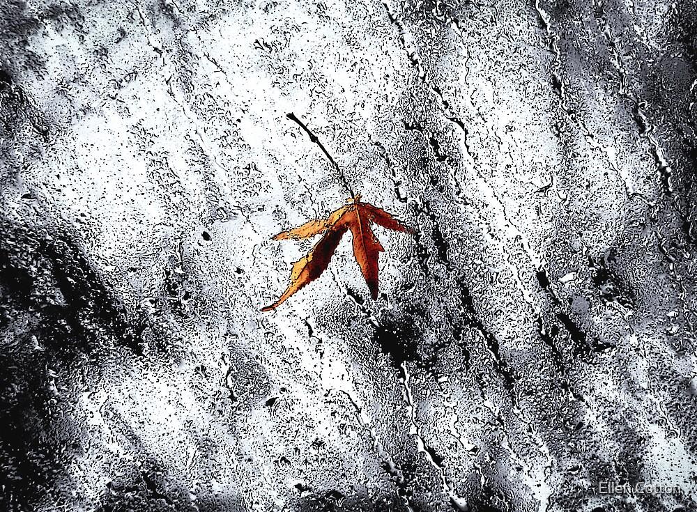 Rain Fall 2 by Ellen Cotton