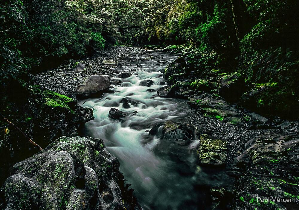 Fiordland National Park by Paul Mercer