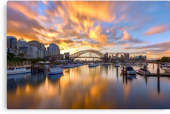 Reflections of Lavender by Mark  Lucey